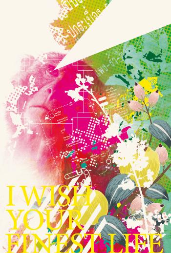 postcard_takami2016