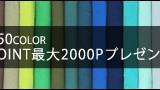 YEVS カラーパンツ 728×90
