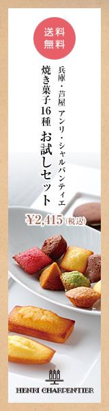 アンリシャルパンティエ 焼き菓子16種 お試しセット 160×600