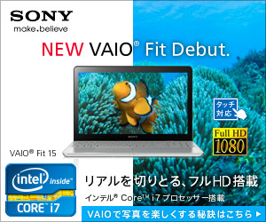 SONY VAIO Fit Debut 300×250